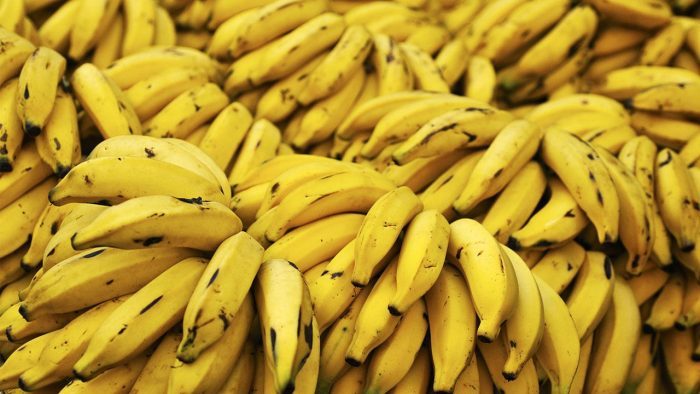 رژیم غذایی پایین آمدن قند خون - غذاهای مفید