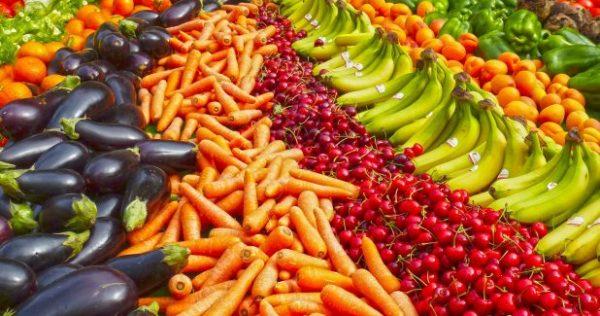 رژیم غذایی بوکسورها