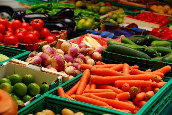 رژیم غذایی رزمی کاران